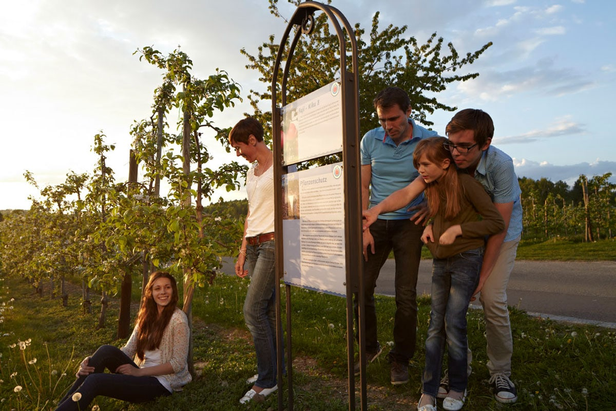 ferienhof-gomeringer-wandern-apfelspaziergang